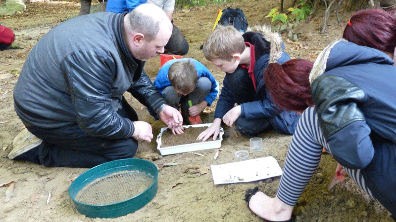 fossil finding at Lesnes Abbey Woods site